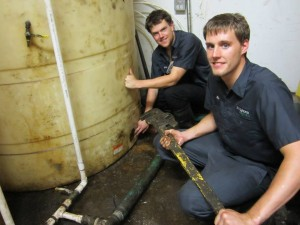 Local jobs from biodiesel
